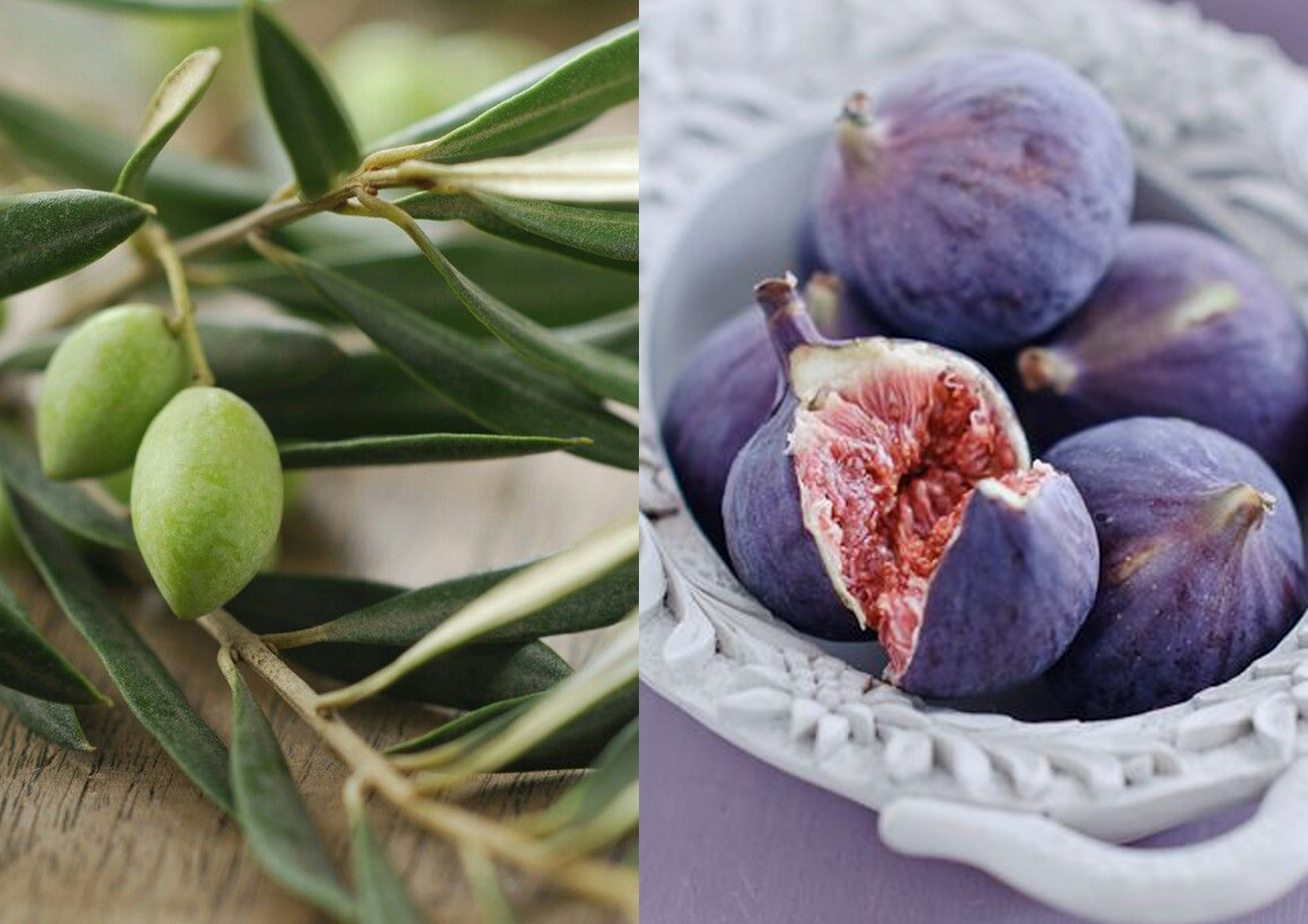 fig and olive 1